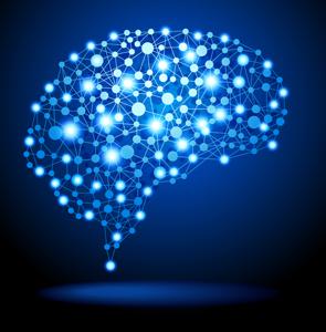 Neurofeedback Changes the Brain